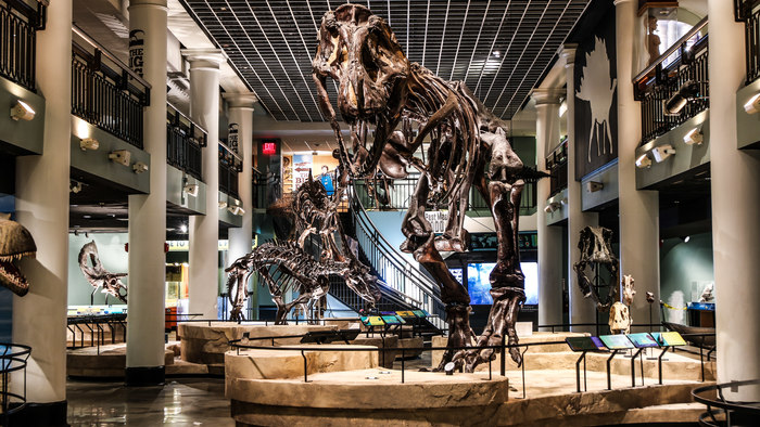 Academy of Natural Sciences Dinosaur Hall
