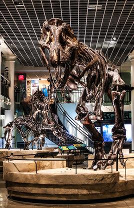 Academy of Natural Sciences Dinosaur Hall